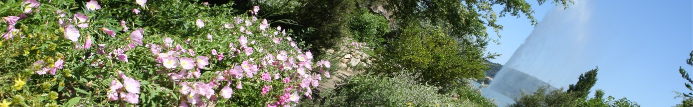 Istres étang de l'Olivier jet d'eau