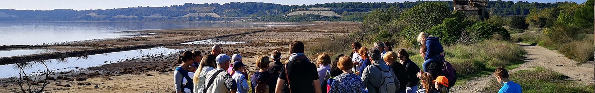 Istres Tourisme, le Club découvrez l'étang de Lavalduc