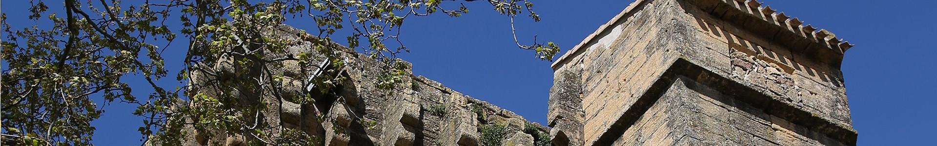 Tour de la reine Jeanne à Entressen