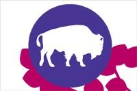Bly le Bison