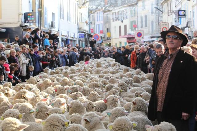La fiesta de los pastores y de los tradiciones