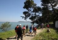 Walk & Hiking