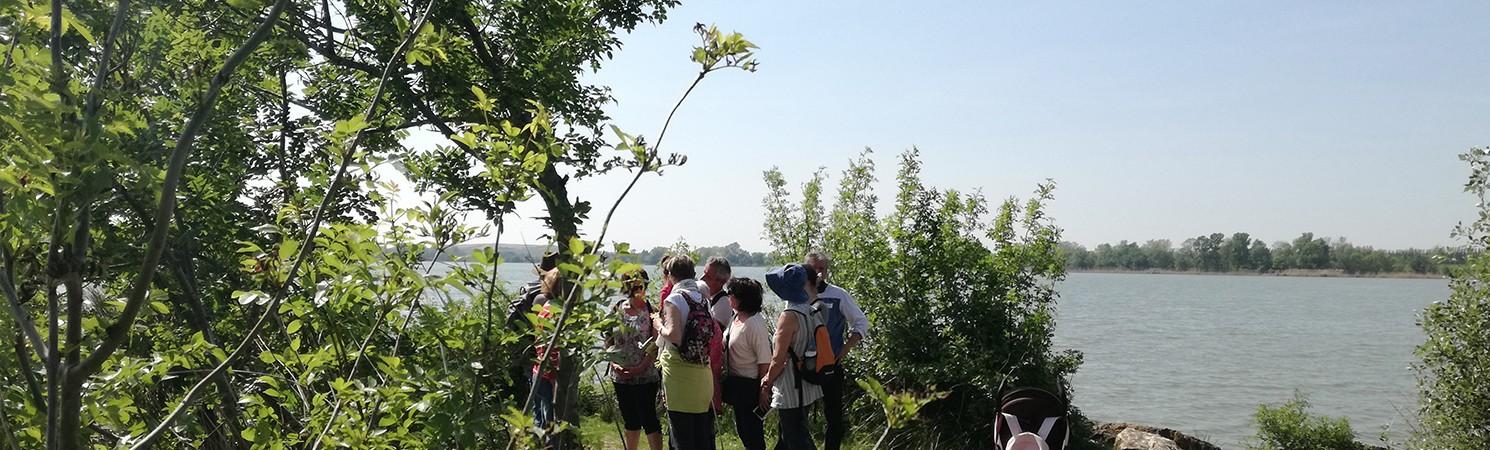 balade-botanique-entressen-banniere-club-tourisme-2013