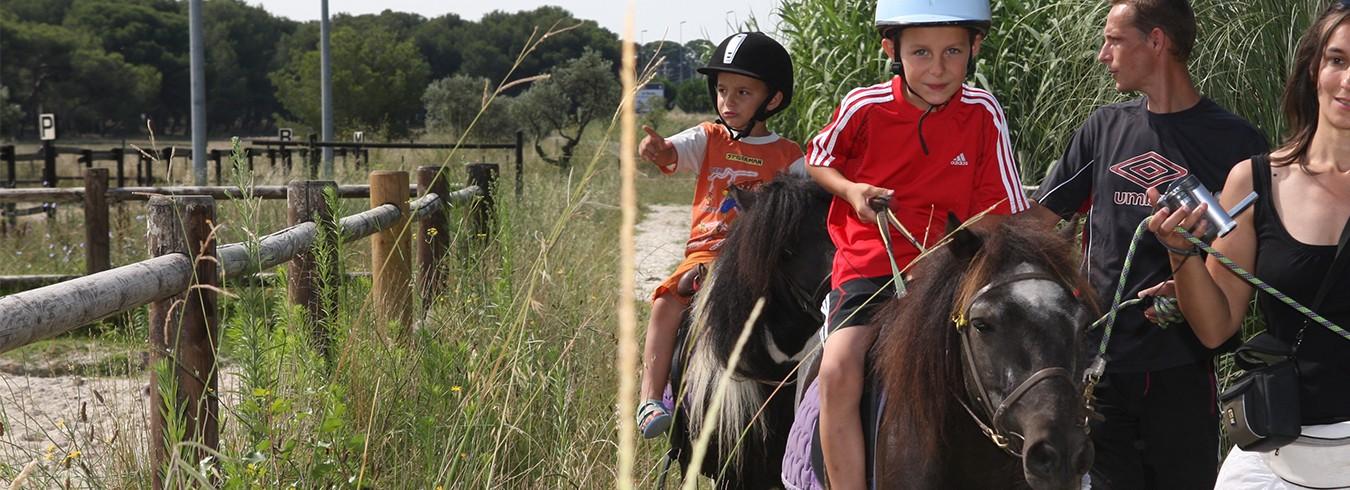 banniere-club-tourisme-poney-equitation-2241