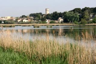 L'étang de Rassuen Istres