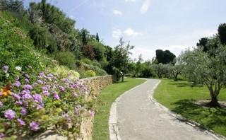 Le Jardin Méditerranéen : plus de 100 espèces végétales