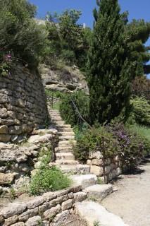 Le Jardin Méditerranéen - étang de l'Olivier - Istres