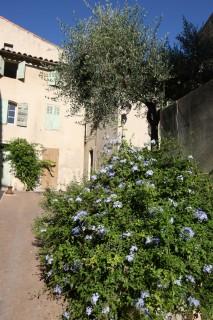 Un centre ancien fleuri
