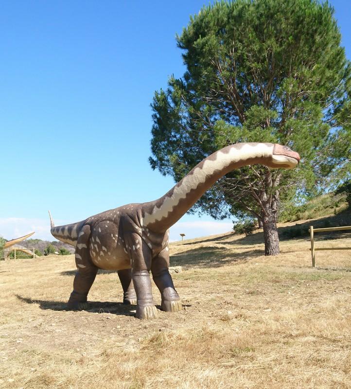 15-atsinganosaurus-2300
