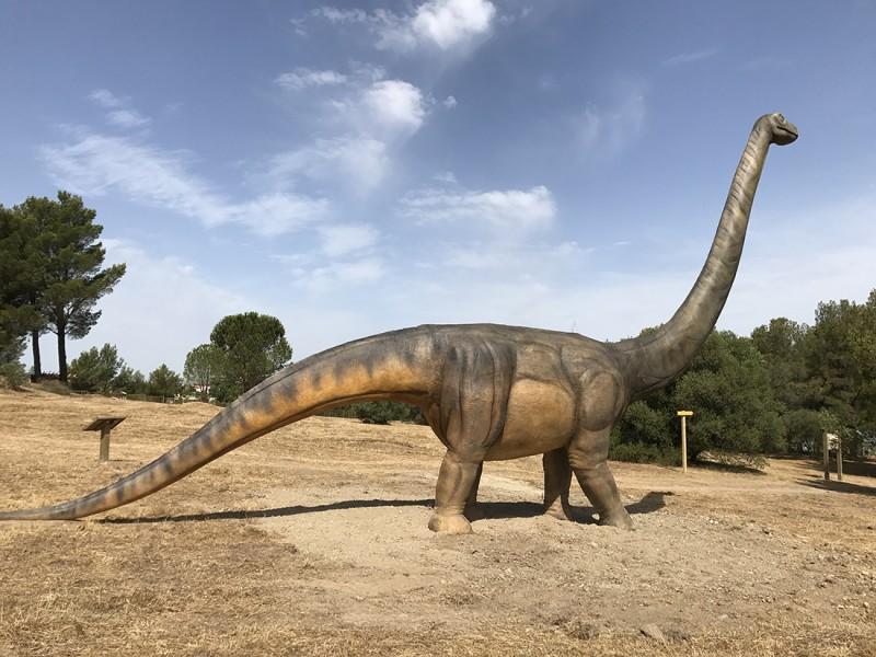 23-diplodocus-2277