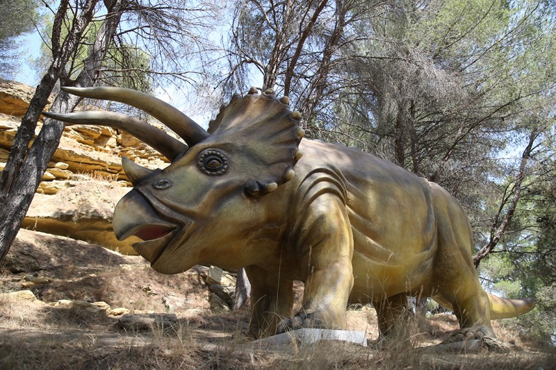 28-triceratops-2283