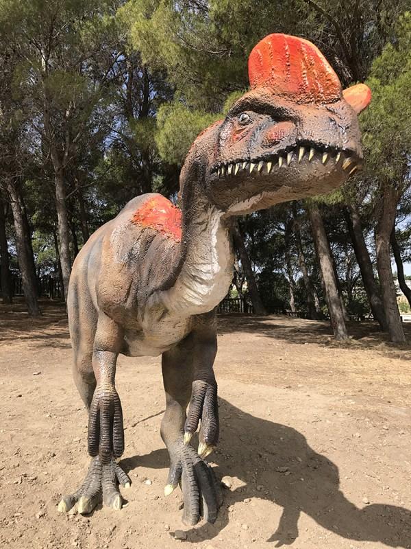 8-dilophosaurus-2264