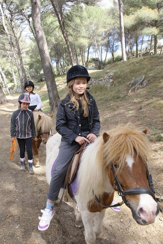 Baladez-vous en poneys au centre équestre