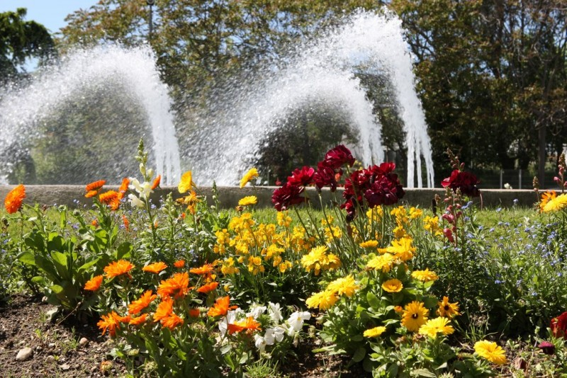 Des ronds points fleuris à Istres
