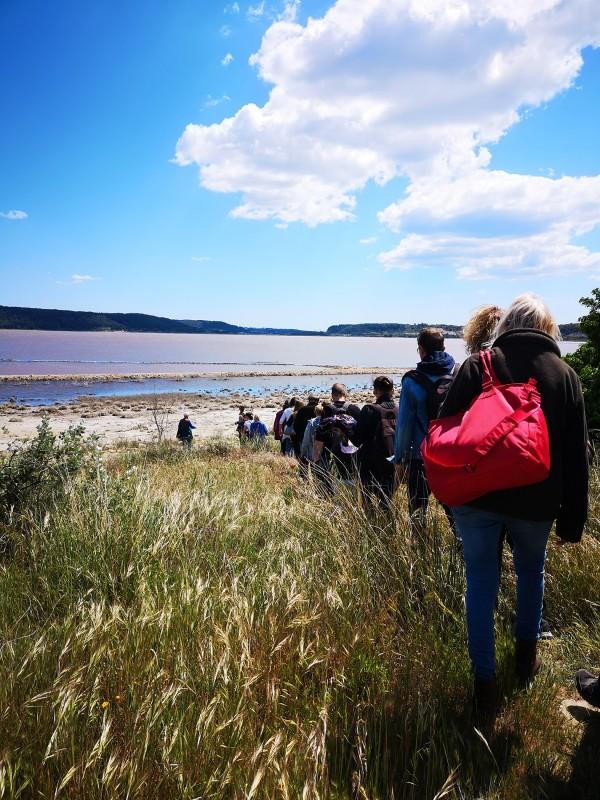 Eco-balade sur l'étang de Lavalduc