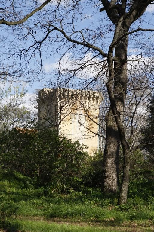 Entressen - Tour de la Reine Jeanne - Istres