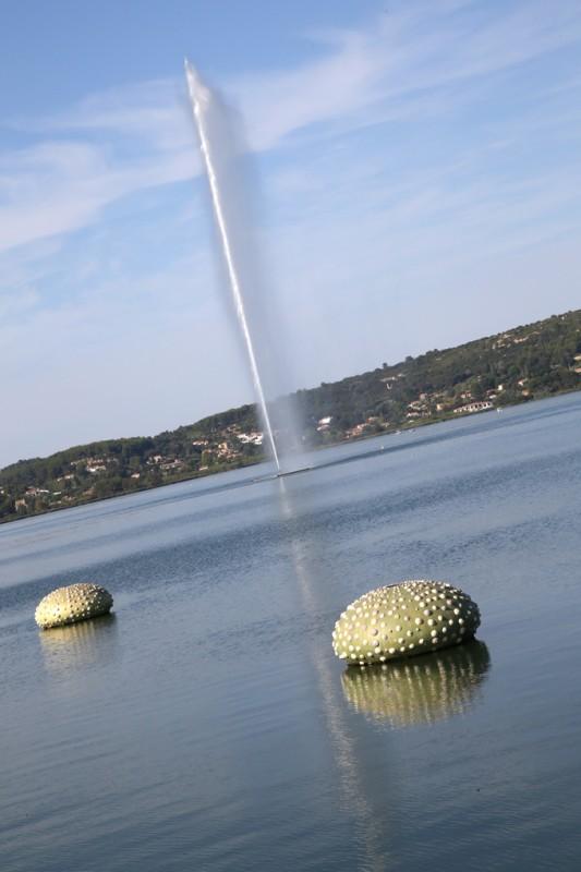Les ourisns flottants de Daniel Zanca sur l'étang de l'Olivier