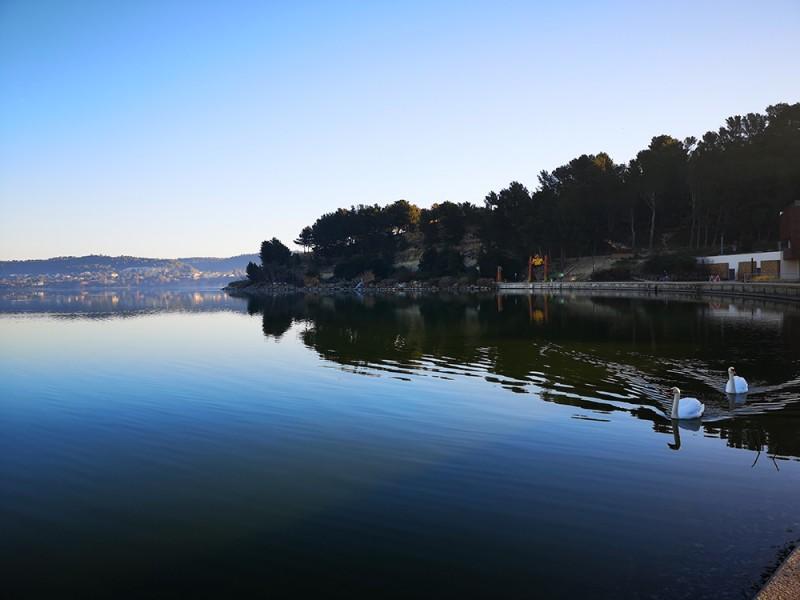 L'étang de l'Olivier joyau du cœur de ville d'Istres