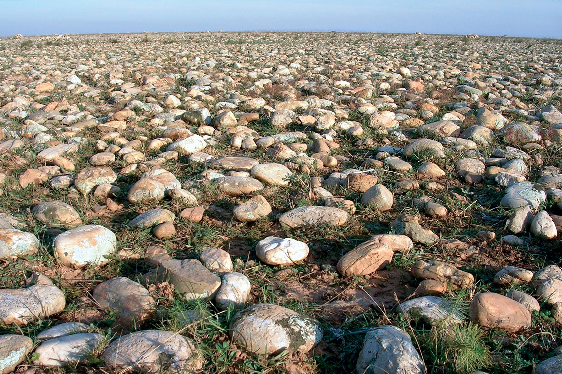 les galets de la Plaine de la Crau - © A.Woff
