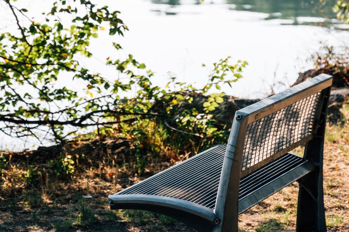 Détente au bord de l'étang de l'Olivier