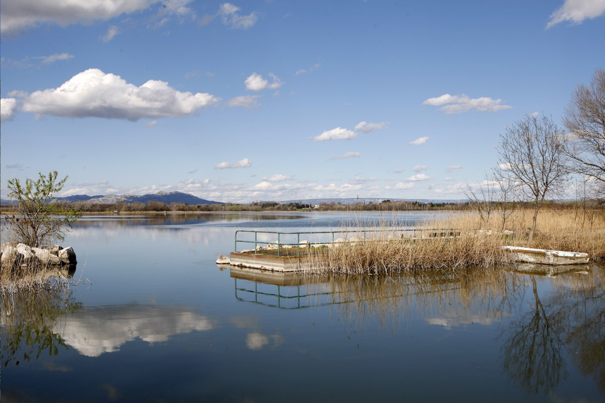 L'étang d'Entressen, un oasis dans la Crau