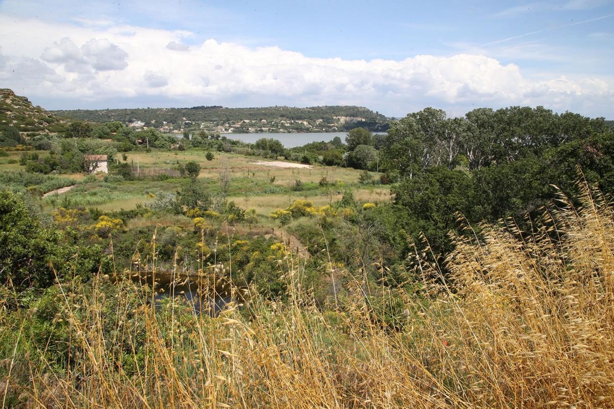 Le parc de l'Olivier prés de la colline du Miouvin