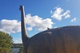 Visitez Dinosaur'Istres et le diplodocus