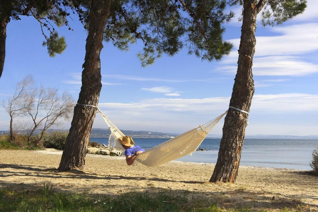 une-bonne-sieste-au-soleil-et-aux-sons-des-cigales-1812-43127