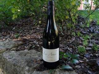 vin-rouge-les-amis-domaine-de-sulauze-2-192986