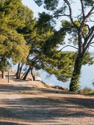 Balade pédestre commentée de l'étang de Berre avec le GIPREB