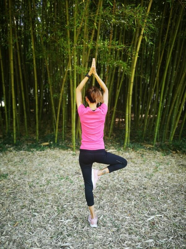 yoga-dans-un-jardin-zen-bambouseraie-juillet-9-patio-191966